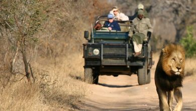 Photo of 5 Things to Enjoy When Traveling in Africa