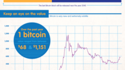 Is Bitcoin Here To Stay? [Infographic] 5