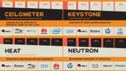 Meet The Movers And Shakers (And Chicken Ladies) of OpenStack [Infographic] 12
