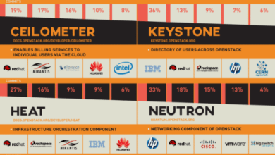 Photo of Meet The Movers And Shakers (And Chicken Ladies) of OpenStack [Infographic]