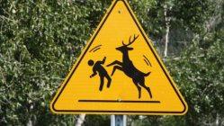 World Animal Crossing Signs 4