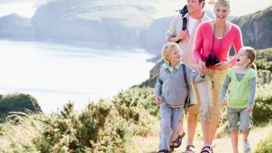 Photo of Four Educational Things To Do With Your Family This Spring