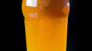 5 Things You Should Know About English-Style IPA 12