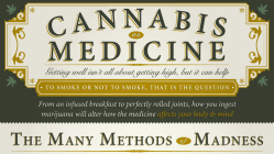 How Medical Cannabis Is Changing The World [Infographic] 9