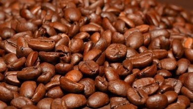 Photo of This Story Highlights The Dangers Of Caffeine