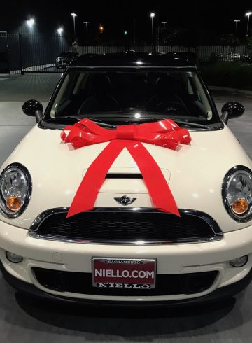 Niello Mini Cooper