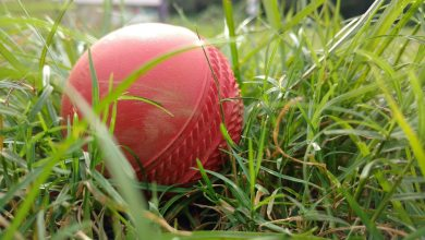 Photo of Cricket Isn't Boring, We Promise