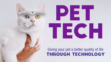 Photo of Can Tech Give Pets A Better Life?