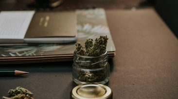 How to Operate a Successful Cannabis Business 1