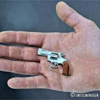 10 Smallest Things in The World That Will Surely Surprise You