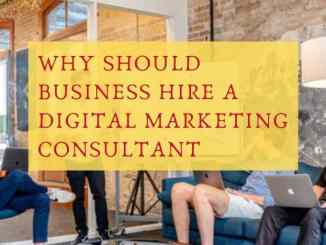 why should business hire a digital marketing consultant