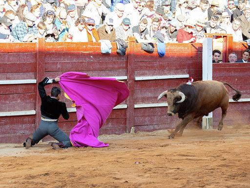 Suspendido el Carnaval del Toro de Ciudad Rodrigo 2021