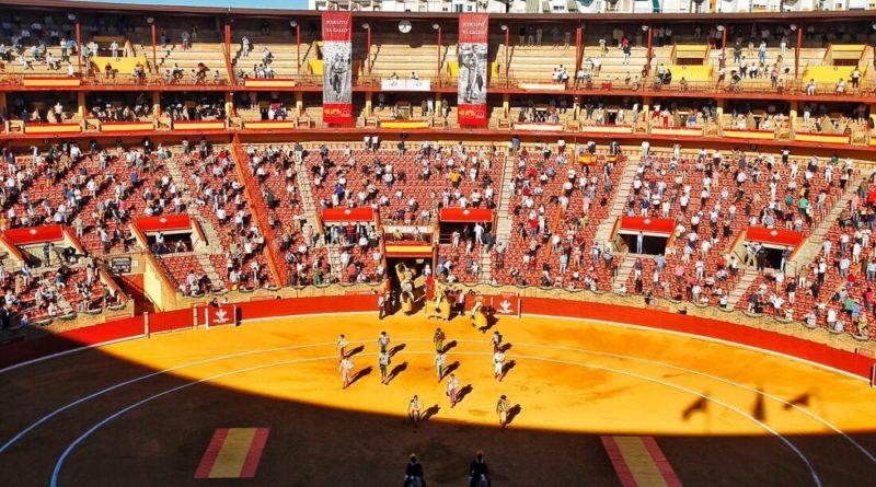 Comunicado sobre el impacto en la Feria Taurina de Córdoba de la nueva normativa de la Junta de Andalucía