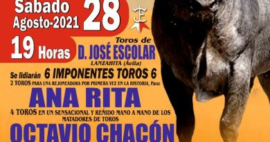 La rejoneadora Ana Rita, Octavio Chacón y Javier Jiménez, cartel para Arenas de San Pedro