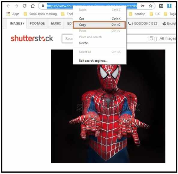2 Tools | How to download free images from Shutterstock