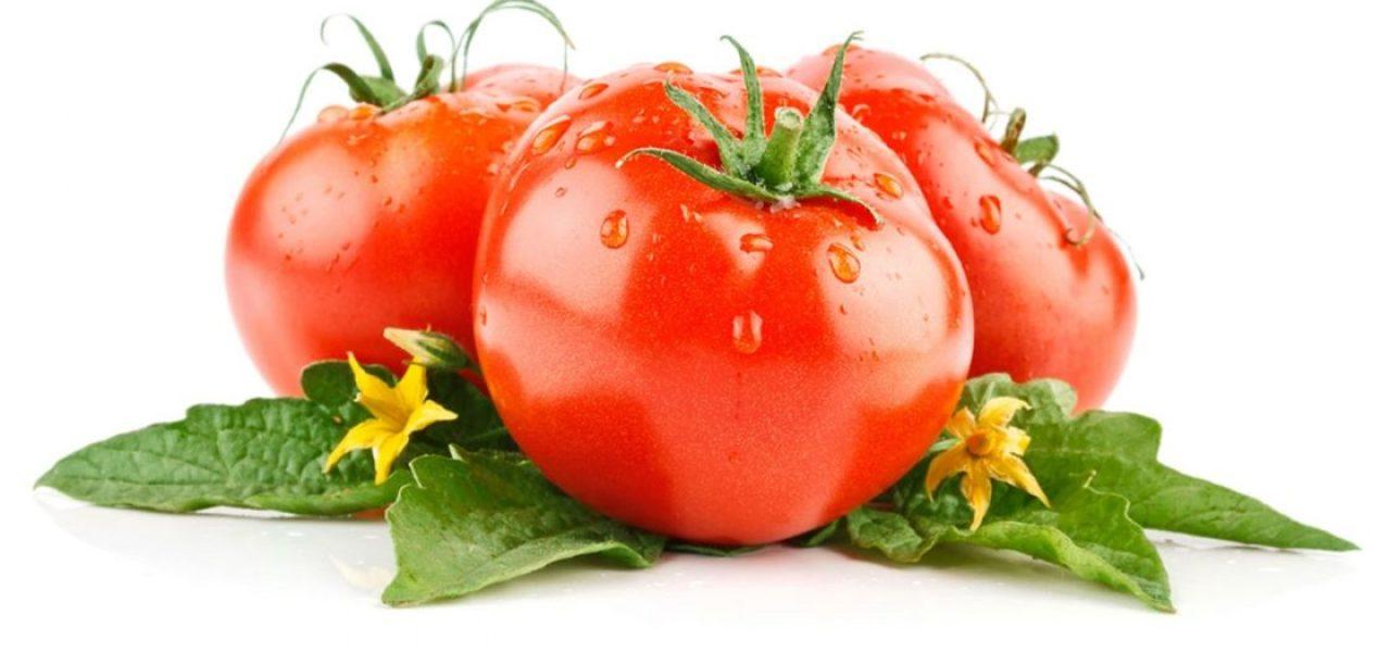 томатов