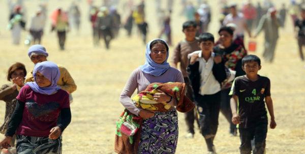 геноцида езидского народа