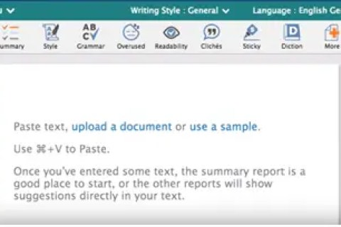 ProWritingAid Word Explorer