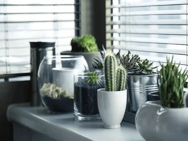 Outdoor Roller Blinds Will Save You Money