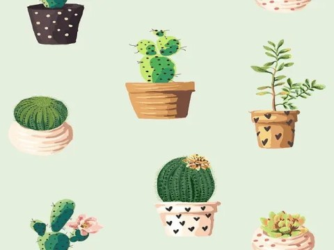 5 Points To Keep In Mind Before Buying Plants Online 1