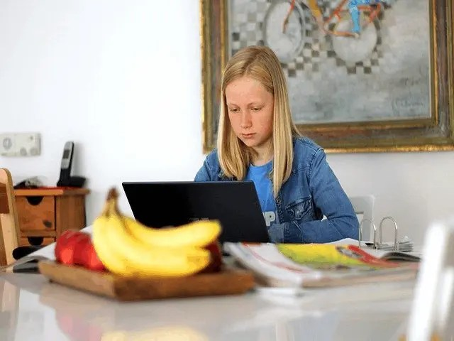 Top 5 Myths Busted About K-12 Online Home Schooling! And Time is About It