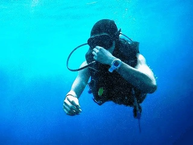 Sports Watch Collection 10 Best Durable Dive Watches