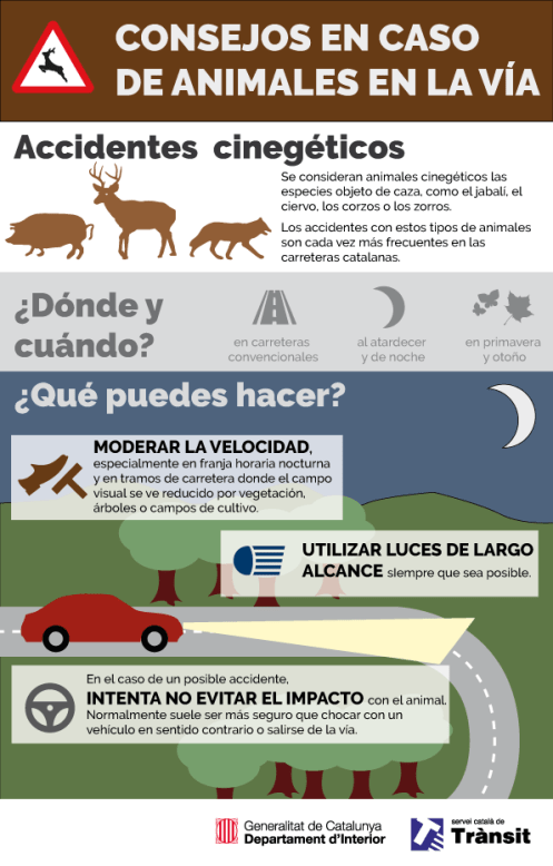 infografia-accidents-cinegetics-_castella