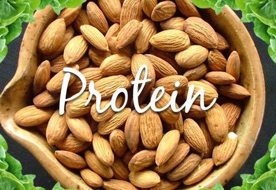 Obtenha a sua proteína a partir das plantas e não da carne, se quiser continuar a ser saudável. Verdadeiro ou falso? Veja por si mesmo