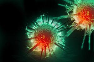 HPV vírus do papiloma humano