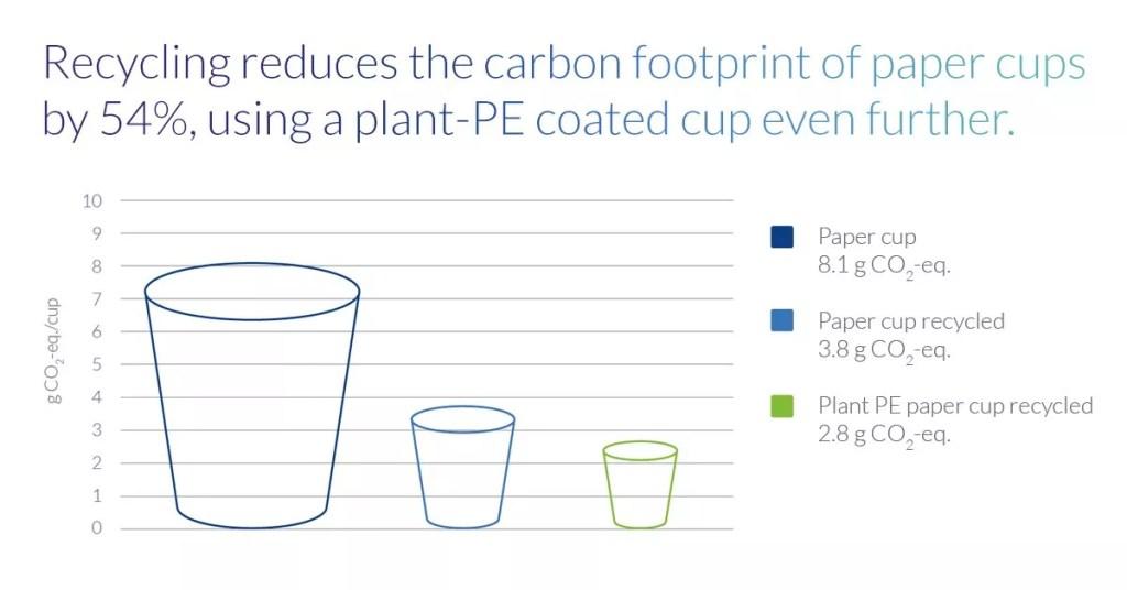 Что такое углеродный след бумажного стаканчика и как с этим жить