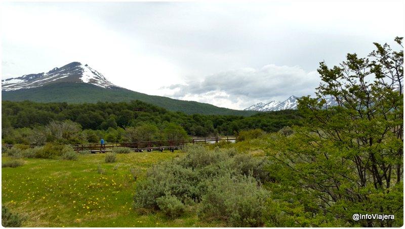 Ushuaia_Parque_Nacional_Tierra_del_Fuego_Bahia_Lapataia_Montaña