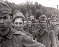 Вот как французские солдаты оказались в советском плену
