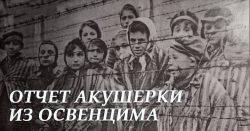 Рапорт польской акушерки из Освенцима. Не для слабонервных