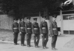 В каких войсках Советской армии почти не было дедовщины