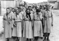Бордель в концлагере Освенцим. Страшные страницы истории