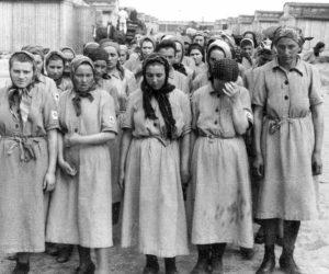 бордель в концлагере