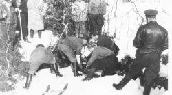 Кто убил группу Дятлова. И за что. Рассказал охотник