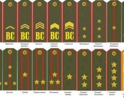 Воинские звания: Как они появились? Сержант, лейтенант, капитан и другие