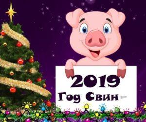 Новый 2019 год Свиньи