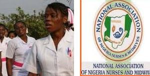 School of Nursing Fees