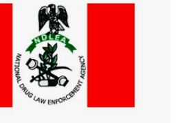 Free NDLEA Past Questions