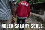 NDLEA Salary Scale and Structure in Nigeria 2021