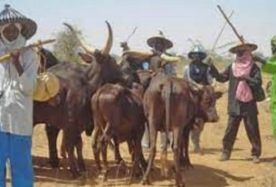 Just in: Southern Nigeria Frontier shock's the earth with move against Miyetti Allah