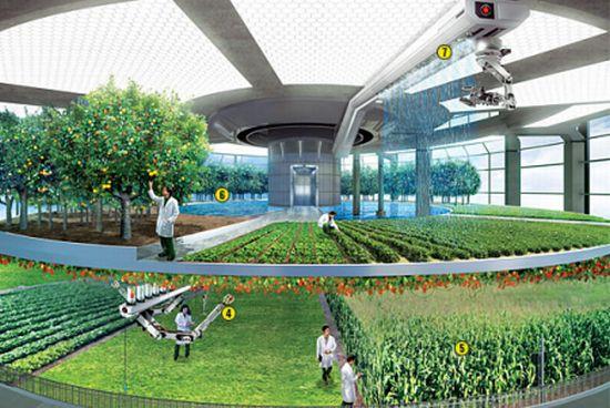 design-concept-of-vertical-farming_5810