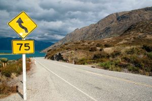 A Glimpse of NZ's Infrastructure Asset Management Journey