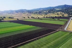 California's Salinas Valley Is Concerned for its Single Water Source