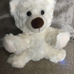 sophie the ghost hunting rempod proximity sensing bear