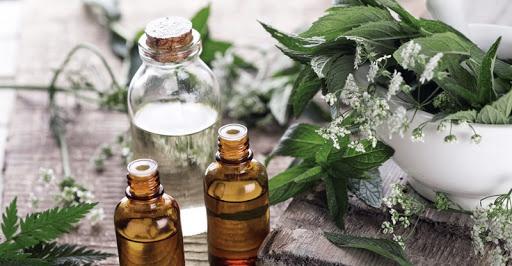 Savoir faire ancestral le soin par les plantes