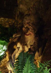 dal bosco museo di verona
