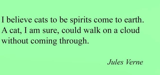 jules-veme-quotes-2